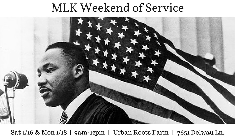 MLK Weekend 2.0