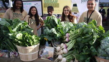 Interns at Farmers' Market