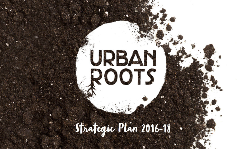 strategic-plan-2016-picture